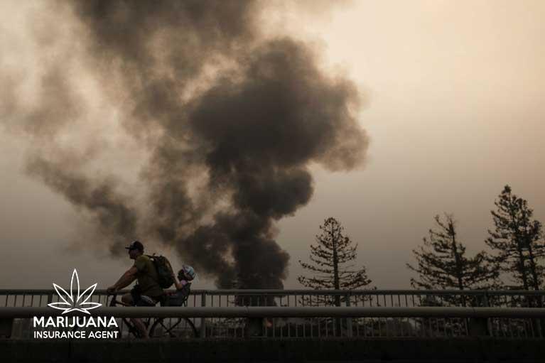 Monterey County Fire Marijuana Cultivation Facility