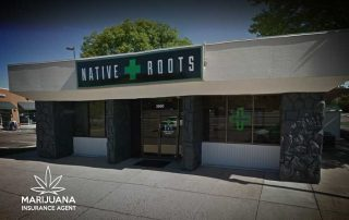 Native Roots Austin Bluffs Colorado