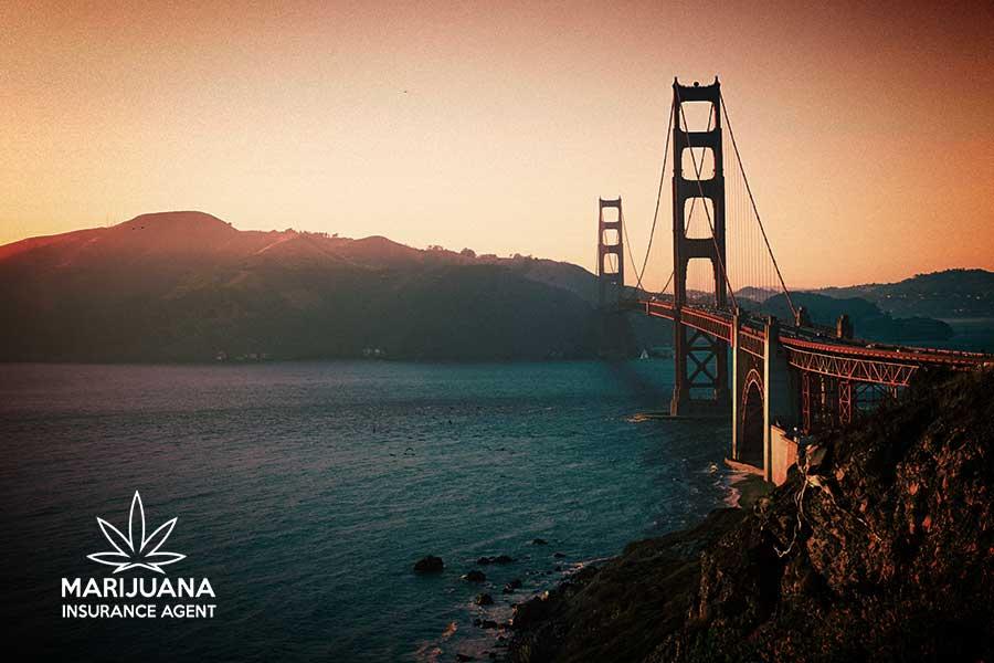 marijuana insurance california
