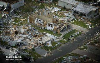 Protect cannabis business natural disaster