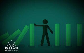 managing risk marijuana industry