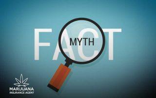 cannabis insurance myths